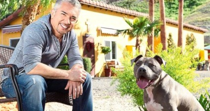 Cesar Millan Heads To KL